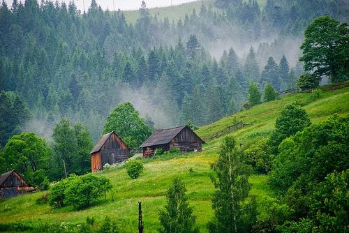 Українці стали менше відпочивати біля моря і більше їздять у Карпати